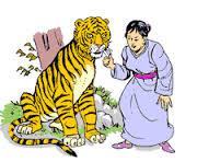 tiger whisker